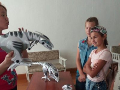 В Кяхтинском музее открылась выставка «Robo Toy's» из Санкт-Петербурга