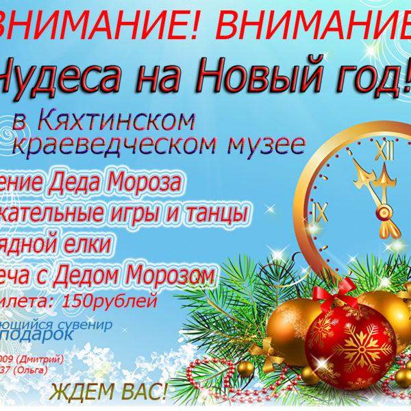 Чудеса на Новый год!